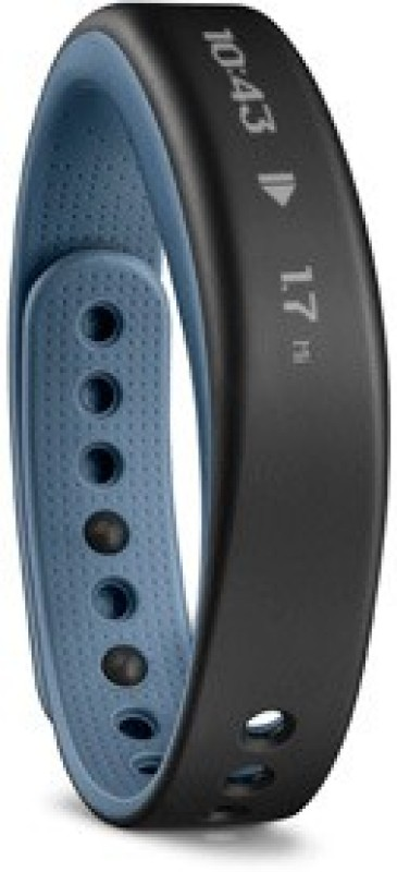 Garmin Vivosmart (Large Size)(Blue Strap, Size : Regular)
