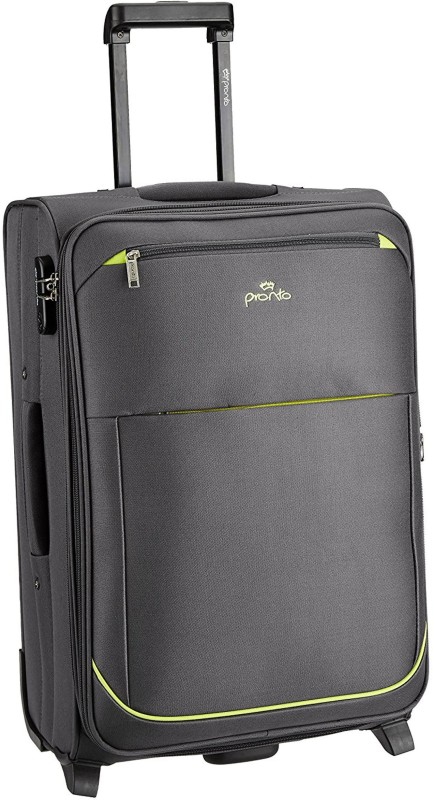 Pronto Moscow Expandable Check-in Luggage - 24 inch(Grey)