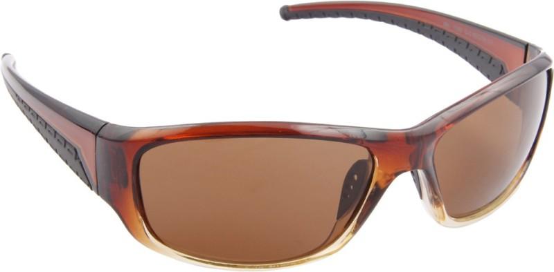 Farenheit Sports Sunglasses(Brown) image