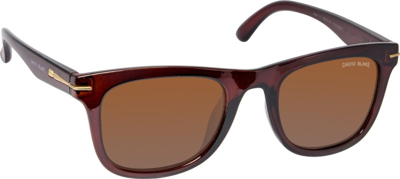 David Blake Wayfarer Sunglasses(Brown) image