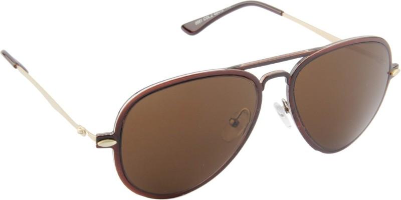 Farenheit Wayfarer Sunglasses(Brown)