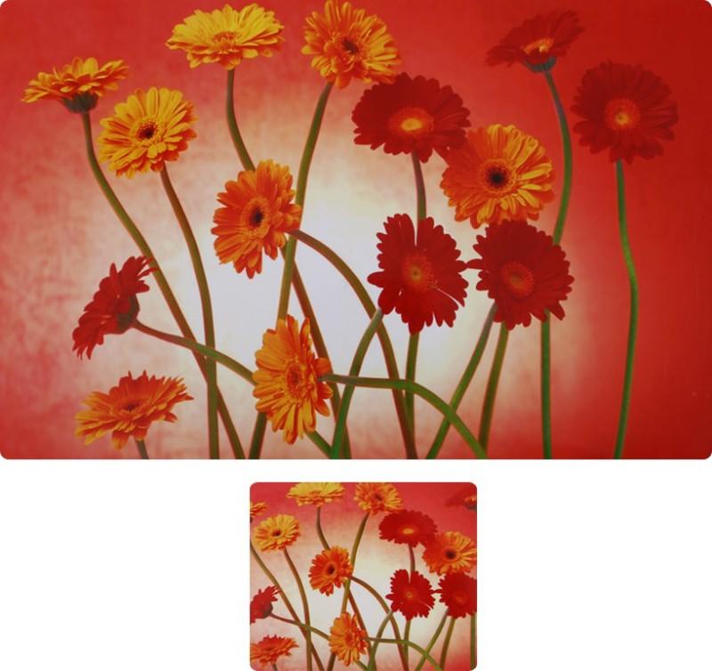E-Retailer Multicolor Polyester Table Linen Set(Pack of 6)