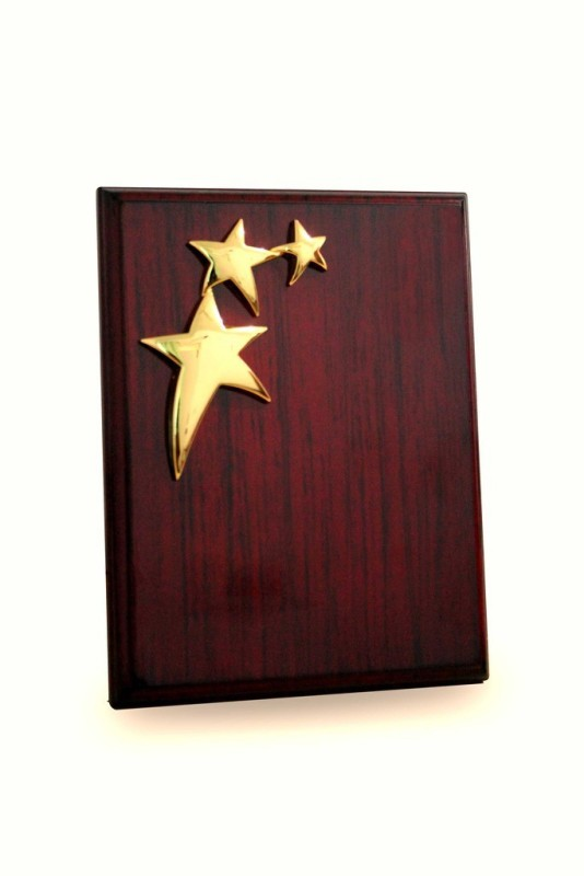 Frontfoot Sports FTK Wooden Triple Star (23 x 17.5 cm) Trophy(23 x 17.5)