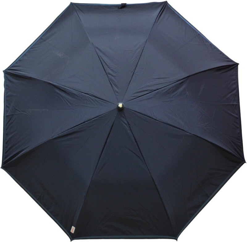 Fendo 2 Fold Auto Open Black Color_ 400138_B Umbrella(Black)