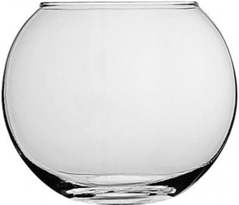 Pasabahce Glass Vase(6.25 inch, Clear)