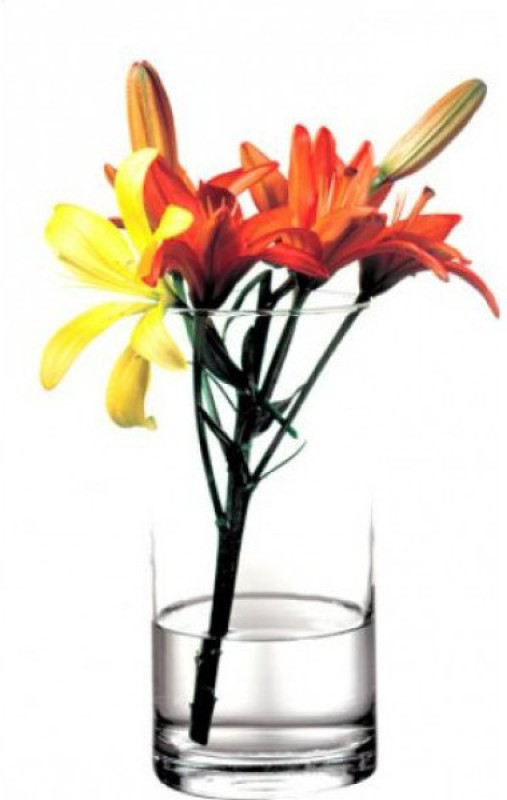 Pasabahce Glass Vase(10.25 inch, Clear)