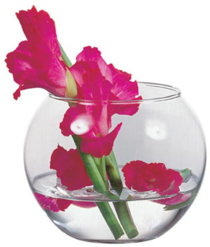 Pasabahce Glass Vase(4.5 inch, Clear)