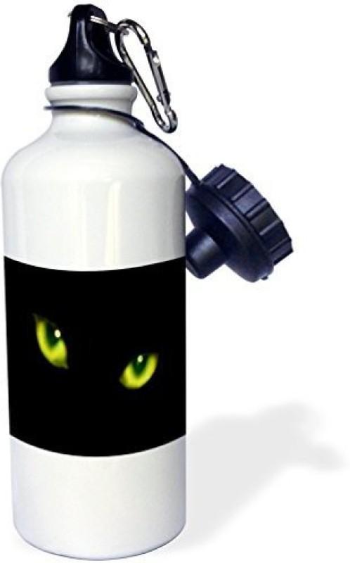 3dRose 621 ml Water Purifier Bottle(White)