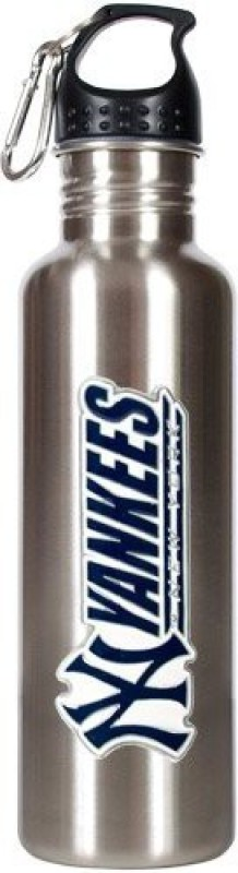 Great American Products 769 ml Water Purifier Bottle(Silver)