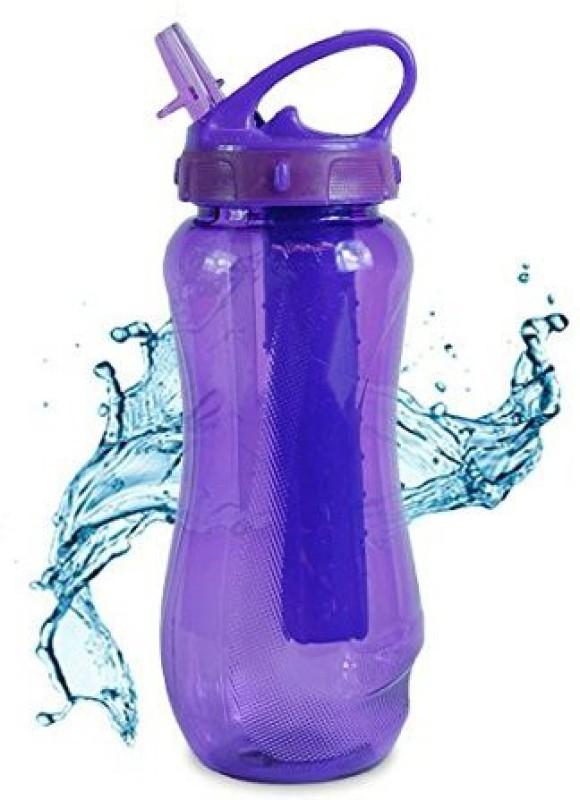 Cool Gear 651 ml Water Purifier Bottle(Purple)