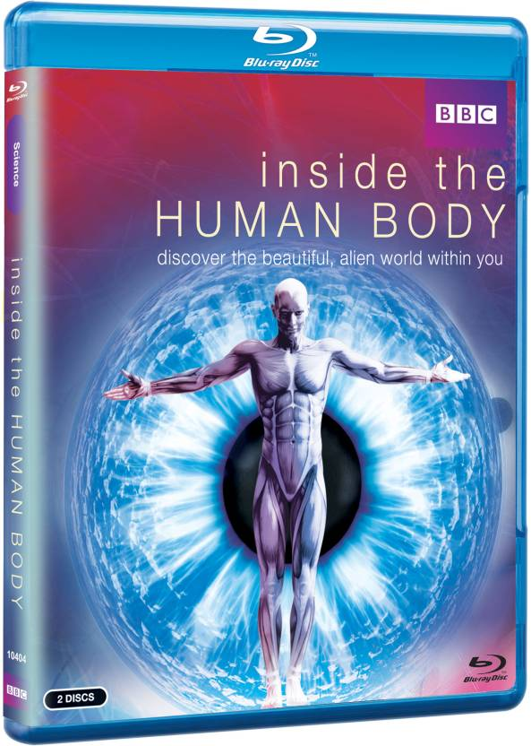 Inside The Human Body - Discover The Beautiful, Alien World Within ...