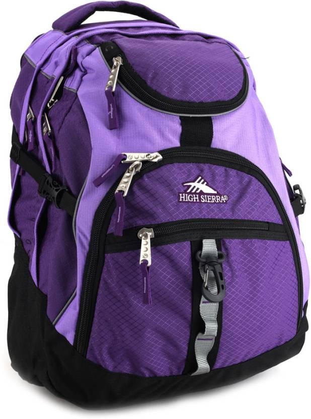 4a815c603 High Sierra Access Laptop Backpack Purple - Price in India ...