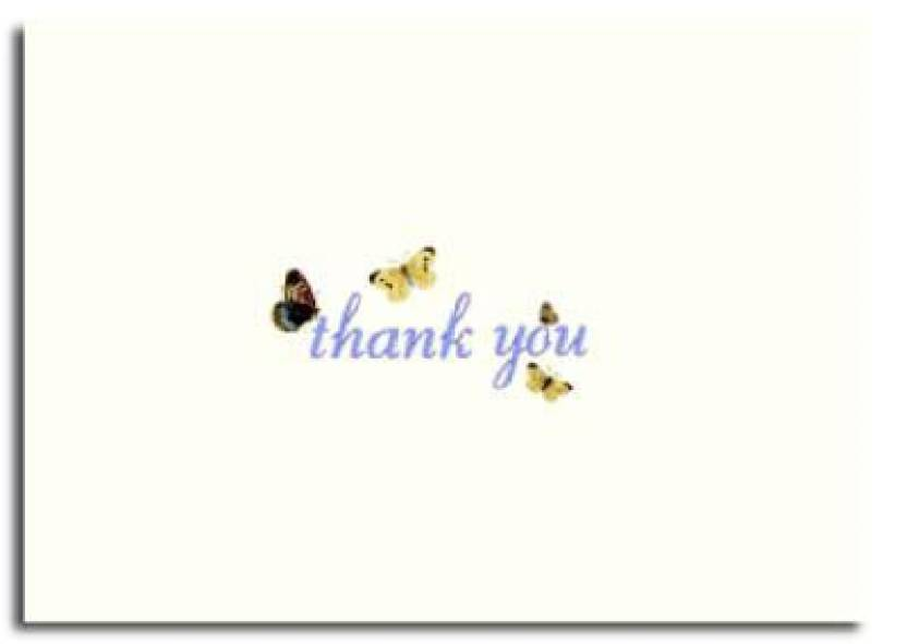 flutter thank you cards buy flutter thank you cards by author