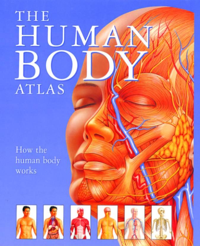 Human Body Atlas How The Human Body Works Hb Buy Human Body Atlas