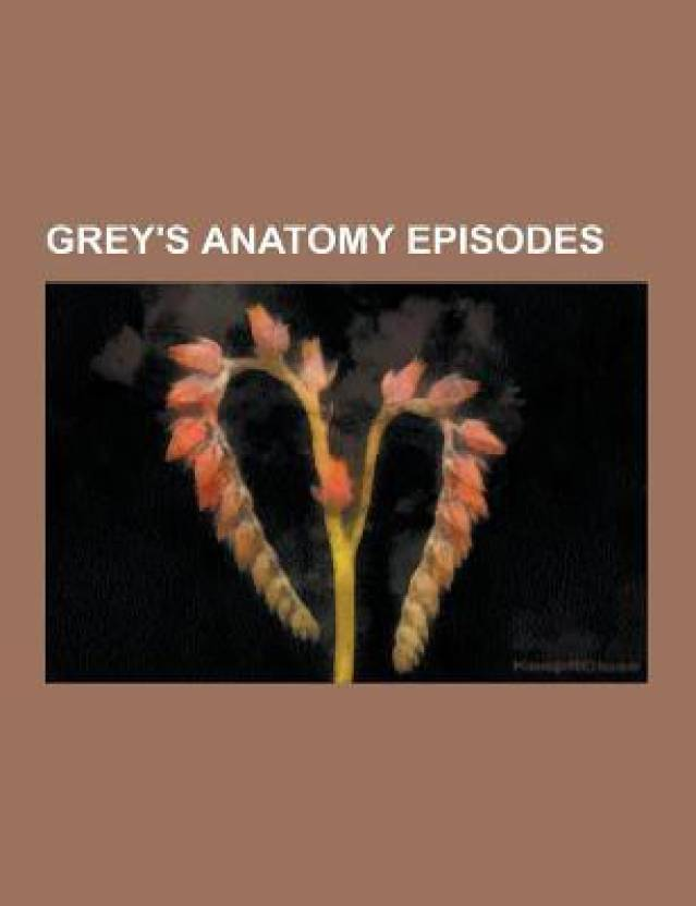 Greys Anatomy Episodes Greys Anatomy List Of Greys Anatomy