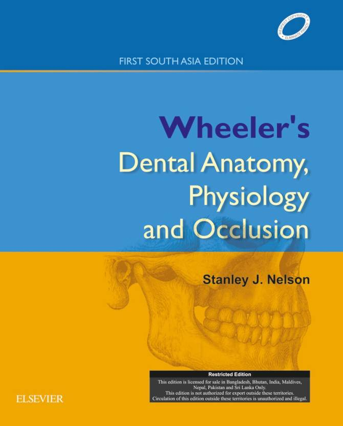 Nelson Wheelers Dental Anatomy Physiology And Occlusion Buy