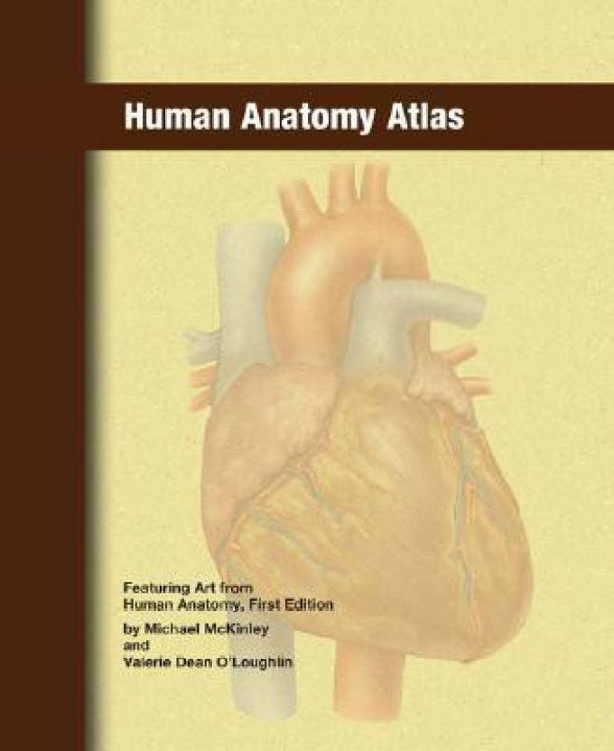 Human Anatomy Atlas Buy Human Anatomy Atlas By Mckinley Michael