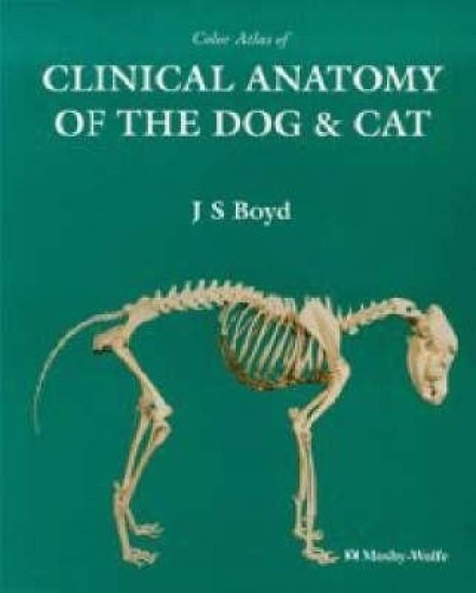 Colour Atlas Of Clinical Anatomy Of The Dog And Cat Buy Colour