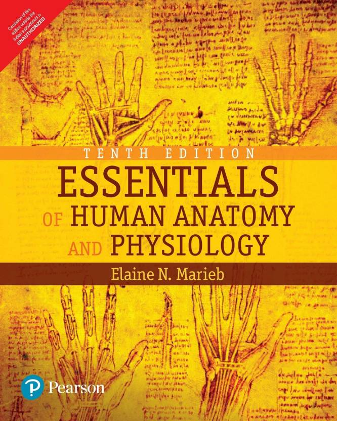 Essentials Of Human Anatomy And Physiology 10 Edition Buy