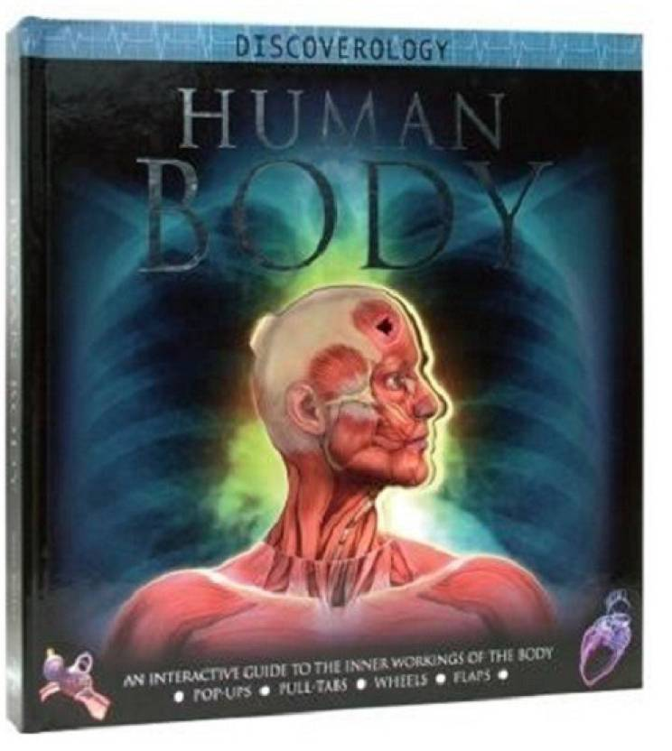 Human Body An Interactive Journey Through The Body Discoverology