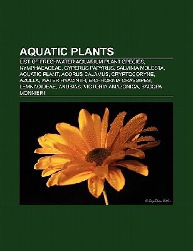 Aquatic Plants List Of Freshwater Aquarium Plant Species Nymphaeaceae Cyperus Papyrus Salvinia