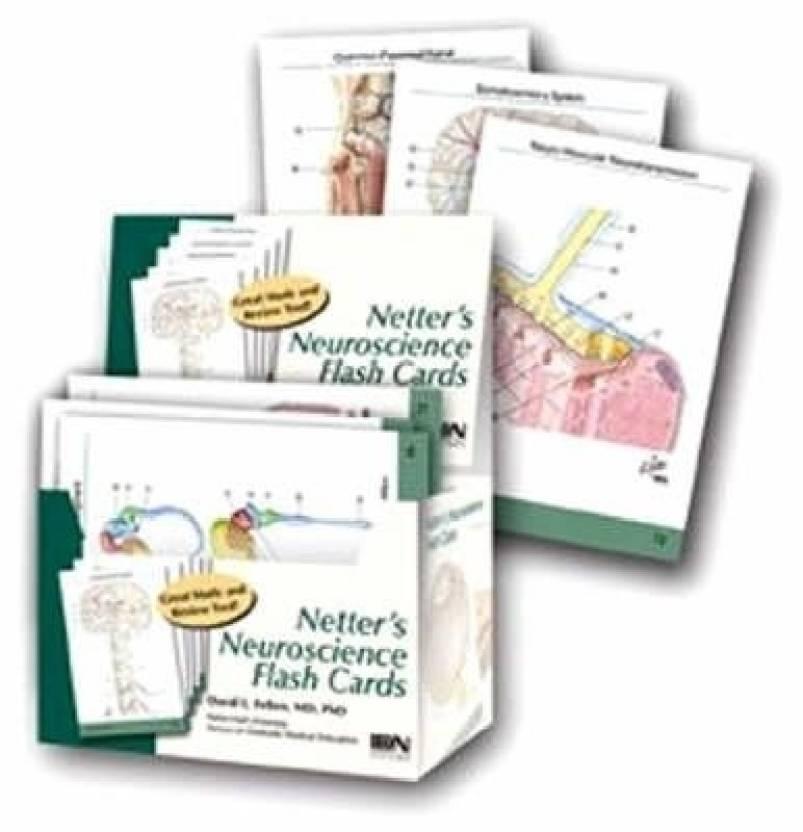 Netter\'s Neuroscience Flash Cards (Netter Basic Science) - Buy ...