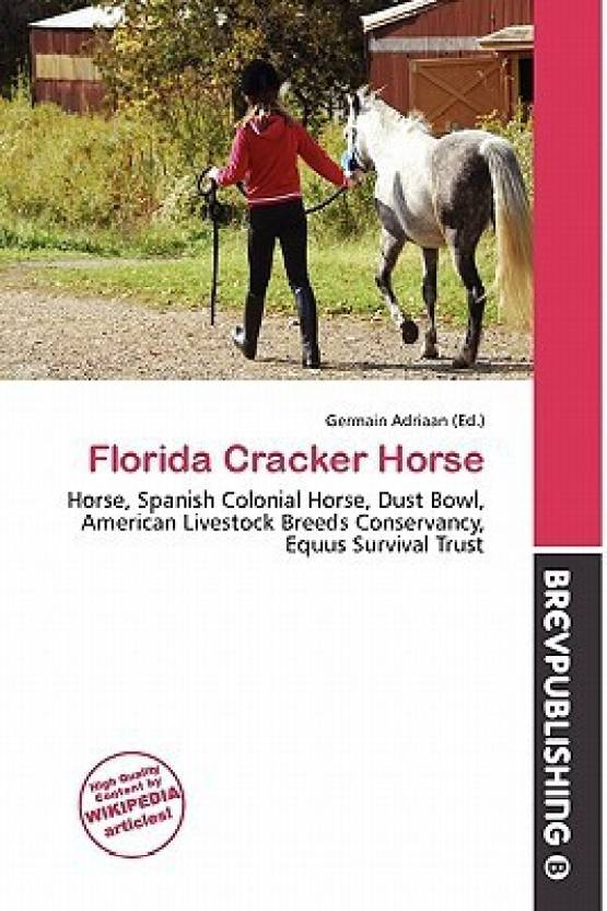Florida Cracker Horse Buy Florida Cracker Horse By Germain Adriaan