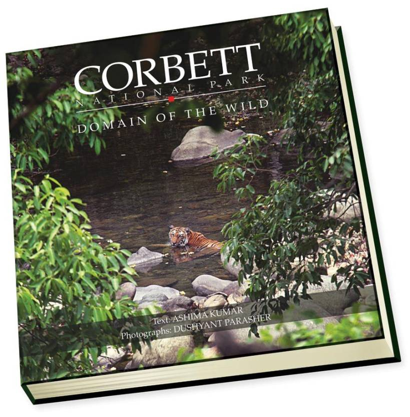 CORBETT NATIONAL PARK: Domain of the wild : Domain of the wild