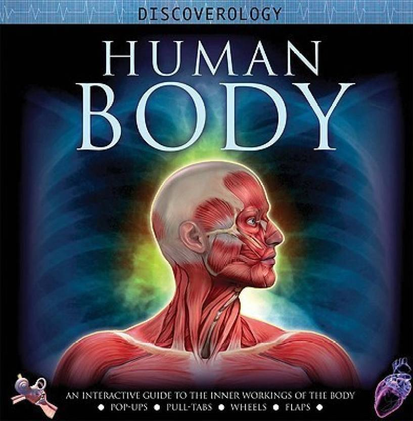 Human Body An Interactive Journey Through The Body Series