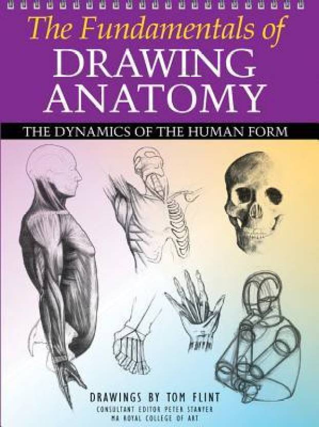The Fundamentals Of Drawing Anatomy The Dynamics Of The Human Form