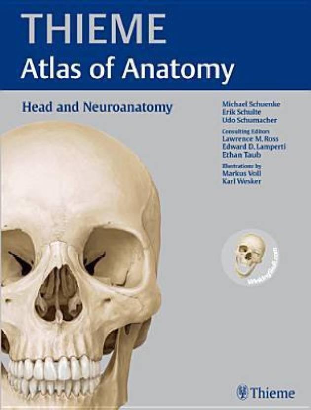 Head And Neuroanatomy Thieme Atlas Of Anatomy 1st Edition Buy Head