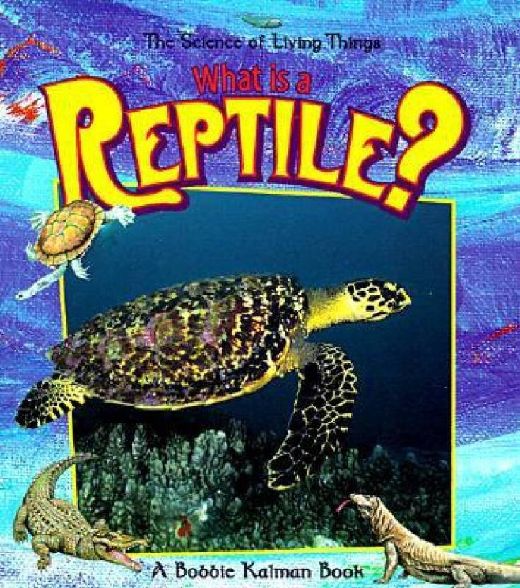 What Is A Reptile Science Of Living Things Buy What Is A Reptile