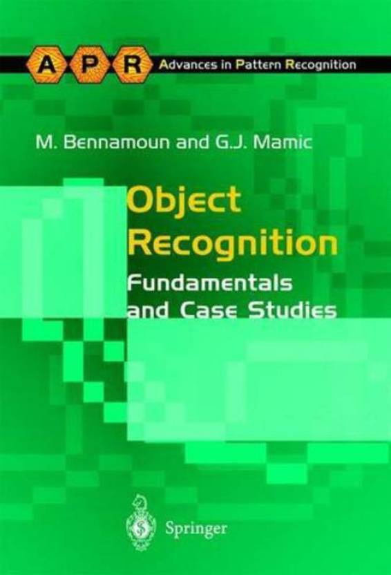 object recognition essay