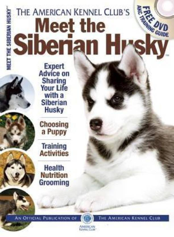 Meet The Siberian Husky Buy Meet The Siberian Husky By At Low Price