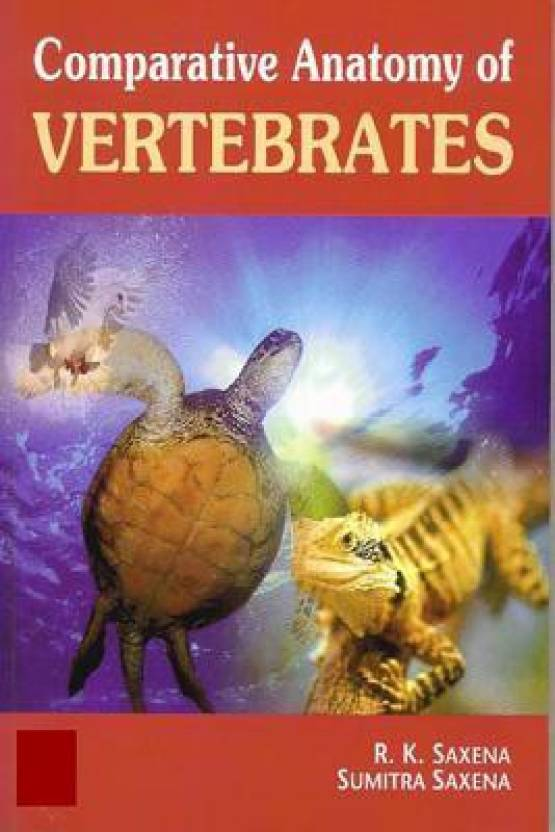 Comparative Anatomy Of Vertebrates - Buy Comparative Anatomy Of ...
