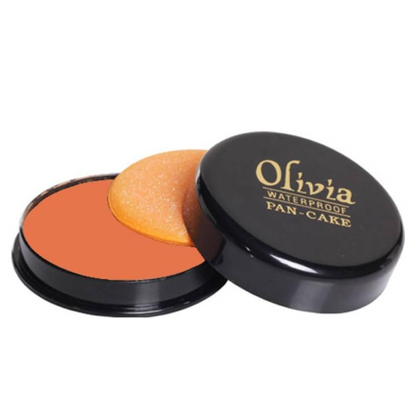 Olivia Waterproof Pan-Cake Concealer