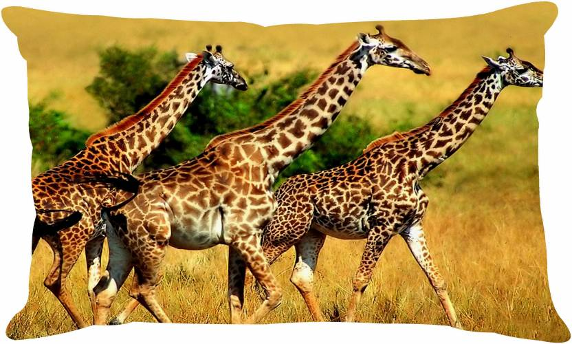 Ambbi Collections Printed Pillows Cover