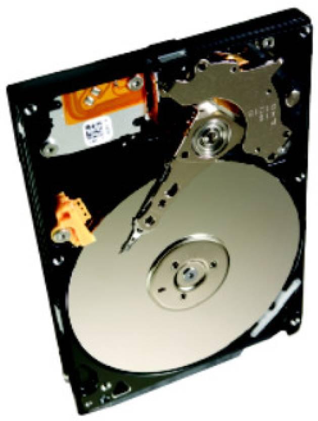 Seagate Momentus 320 GB Laptop Internal Hard Disk Drive (ST320LT022)