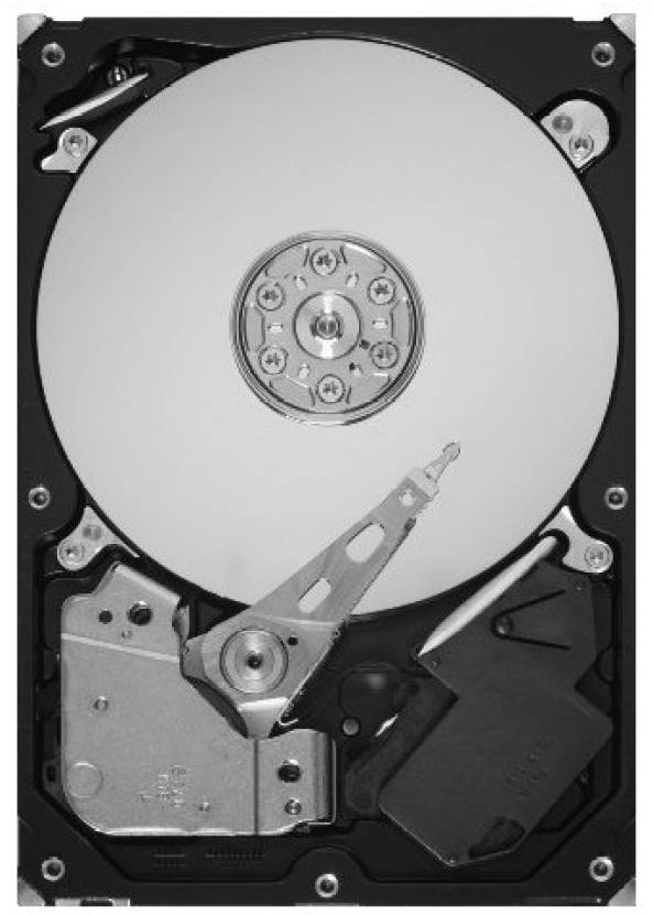 Seagate Barracuda 2 TB Desktop Internal Hard Disk Drive (ST2000DL003)
