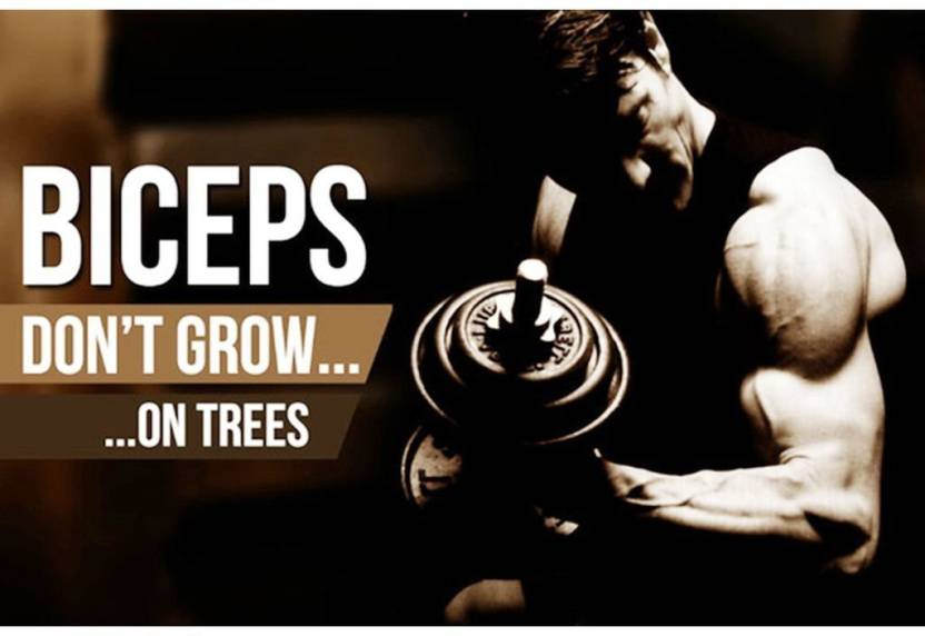 gym posters big size paper print sports posters in india buy art