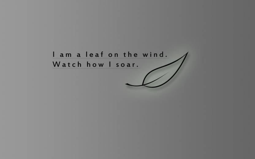 medium-blnrjqnm60-belucky-firefly-fly-leaf-quotes-serenity-original-imaet7a3f8xe7rrw.jpeg?q=70