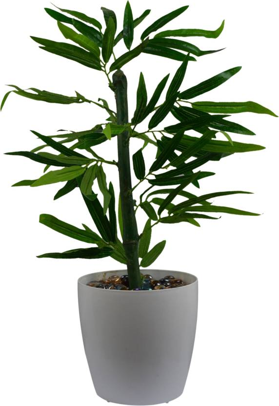 f4d8d4098c24 Fancymart Artificial Bamboo Tree (size 1.5 ft 18 inchs  45 cms) without