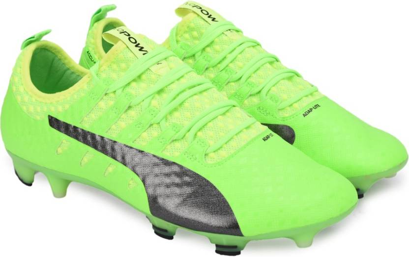 77662ba10fa0 Puma evoPOWER Vigor 1 FG Football Shoes For Men - Buy Green Gecko ...