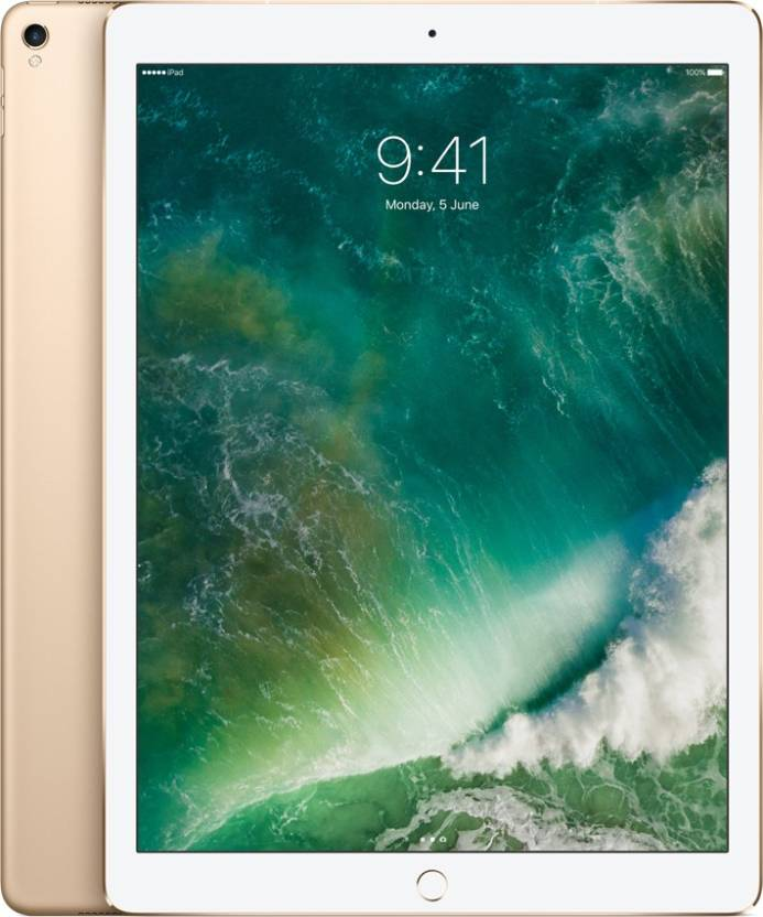 Apple iPad Pro 512 GB 12.9 inch with Wi-Fi+4G(Gold)