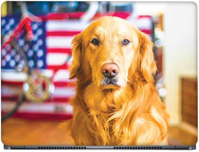 Crazyink Golden Retriever Ddog Vinyl Laptop Decal 13 3 Price In