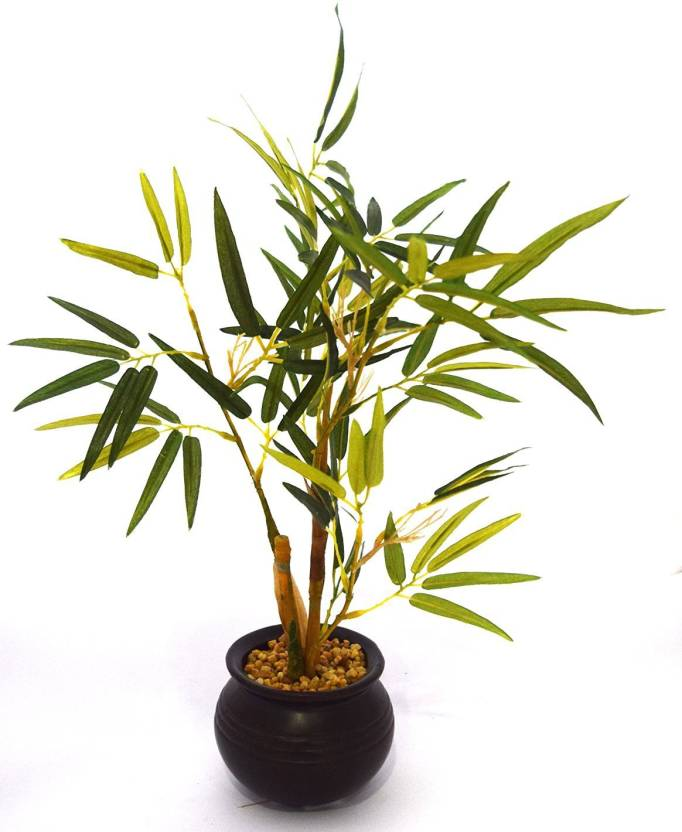 Fourwalls Artificial Bamboo Plant In A Ceramic Vase For Home Dcor