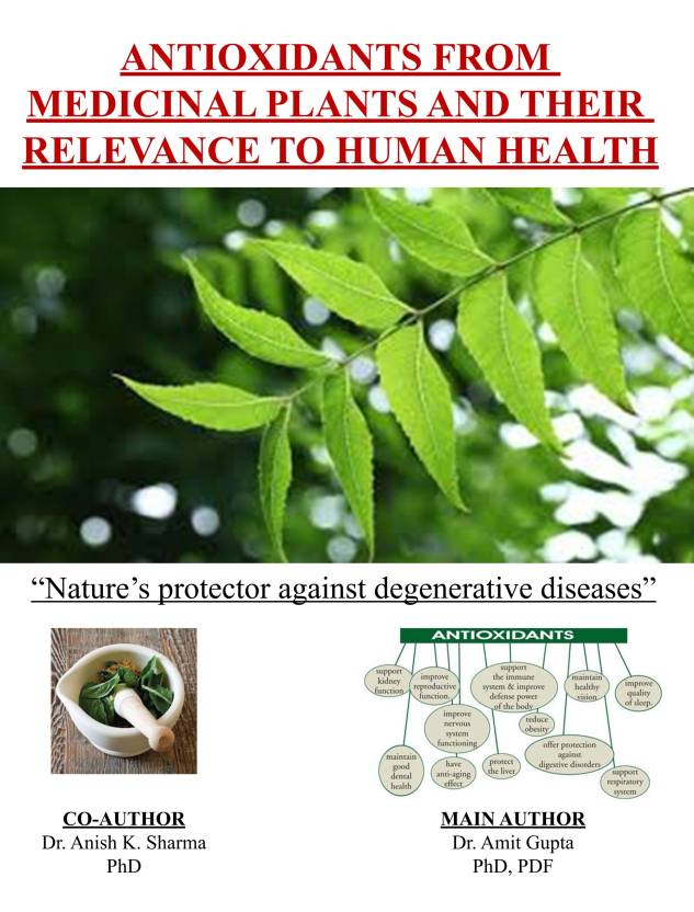 Antioxidants from medicinal plants and their relevance to