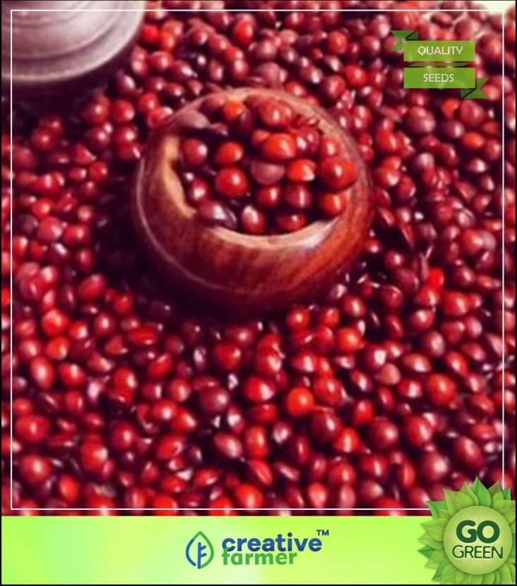 Creative Farmer Tree Seeds Seeds Of Adenanthera Pavonina Red