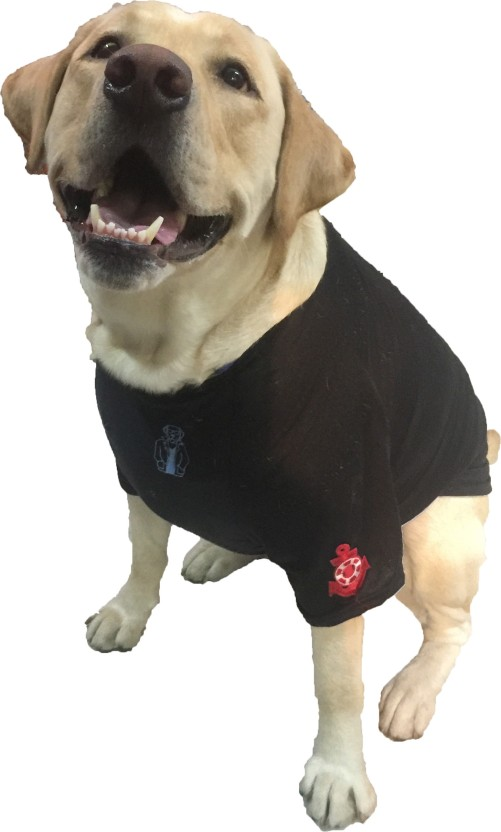 Wagging Fashion T,shirt for Dog Price in India , Buy Wagging