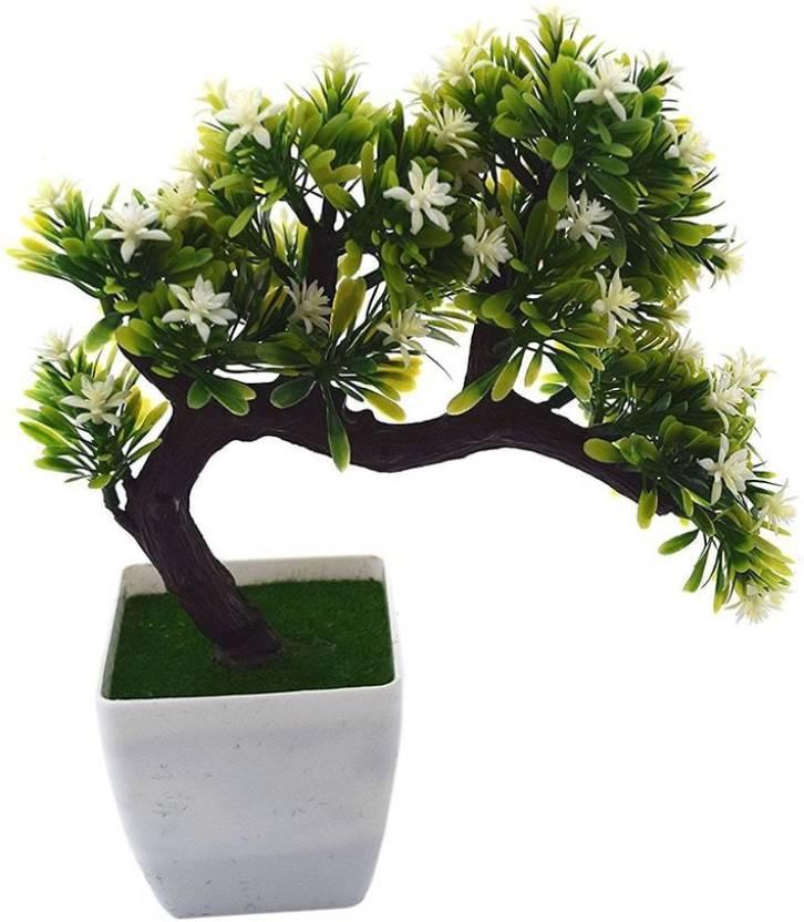 Fourwalls Artificial Drooping PVC and Melamine Bonsai Tree in a Pot (25 cm  x 7 cm x 27 cm, White) Bonsai Artificial Plant with Pot